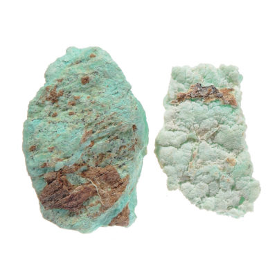 RWCP - Rough Chrysoprase Specimens