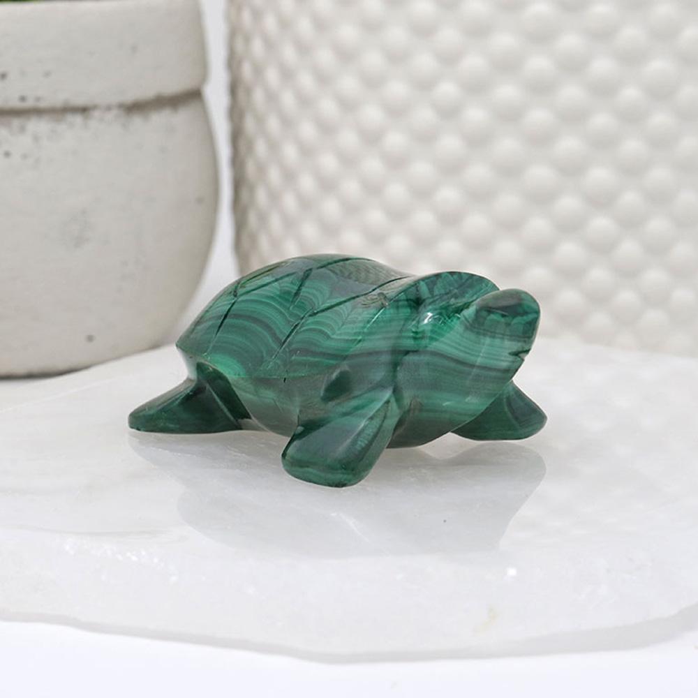 FIGMF - Malachite Frog
